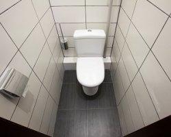 Ремонт в туалете: чем отделать стены